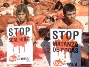 http://almacosta.files.wordpress.com/2009/03/desnudos_matanza-focas.jpg?w=300