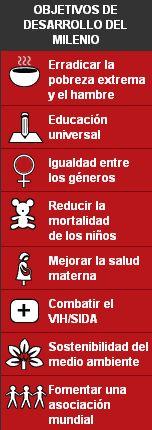 Objetivos de la Campaña del Milenio de la ONU